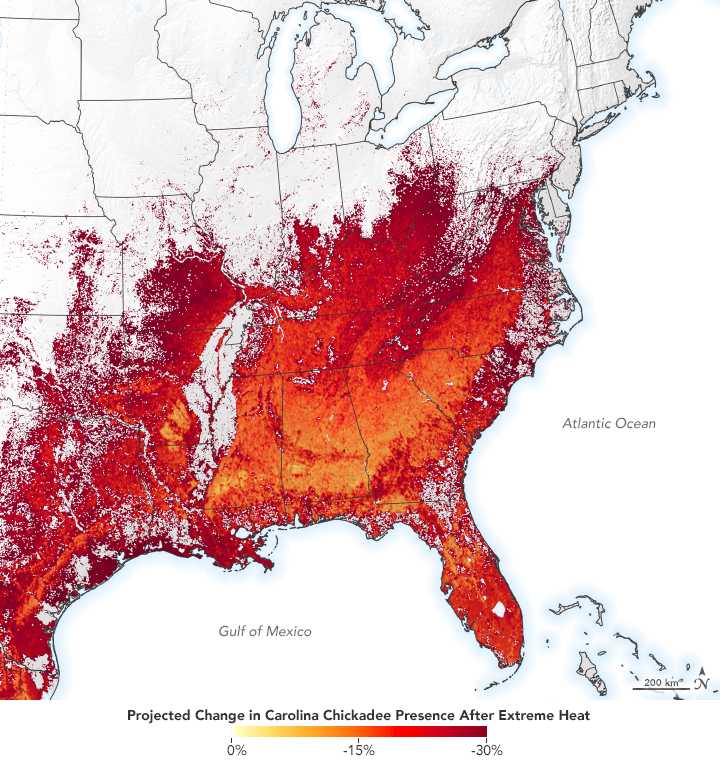 Projected change in Carolina Chickadee presence after extreme heat.