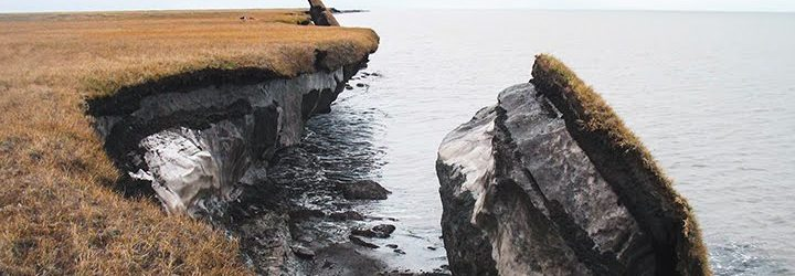 Large sections of exposed permafrost are visible after a portion of Alaska's coastal tundra collapsed. (Photo by USGS Alaska Science Center.)
