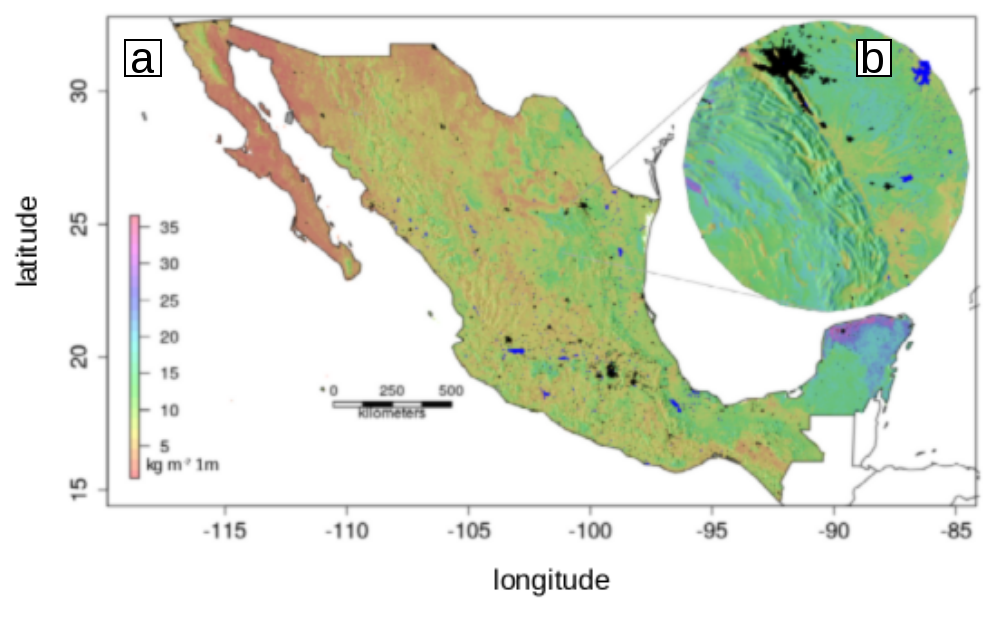 Map of Mexico's soil organic carbon.