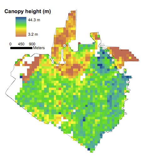 Lidar-derived mean vegetation canopy height in 1998 at 100-m (1-  sc 1 st  ORNL DAAC News & Canopy height and biomass at La Selva Biological Station Costa ...