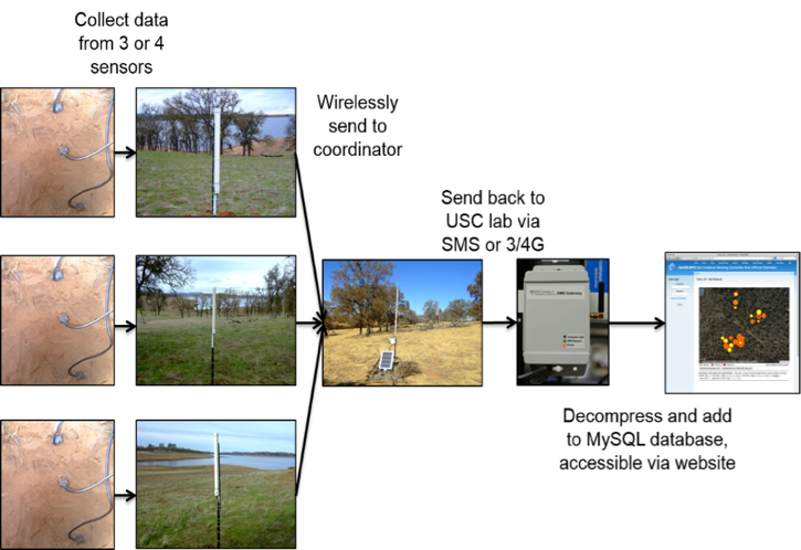 High-resolution soil moisture data from SoilSCAPE | ORNL DAAC News
