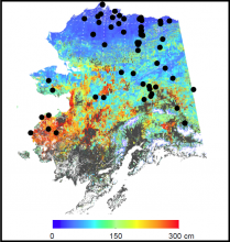 Map of active layer thickness in Alaska.