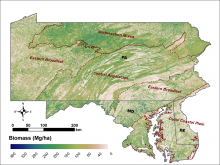 Aboveground biomass for the tri-state region of Maryland, Pennsylvania, and Delaware
