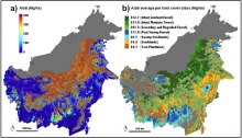 Aboveground biomass and land cover