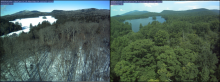 PhenoCam images showing two seasons at the Arbutus Lake site in NY.