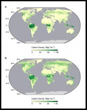 Map of biomass carbon density.