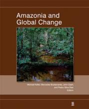 Amazonia and Global Change book cover