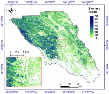 Estimated aboveground biomass for Sonoma County